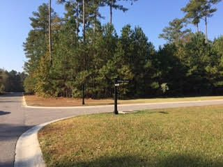 Lot 28  Satling Court Ridgeville, SC 29472