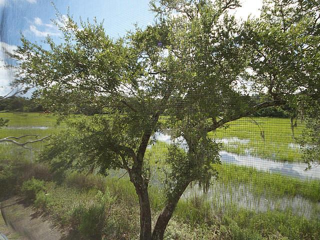 1152  Village Creek Lane Mount Pleasant, SC 29464