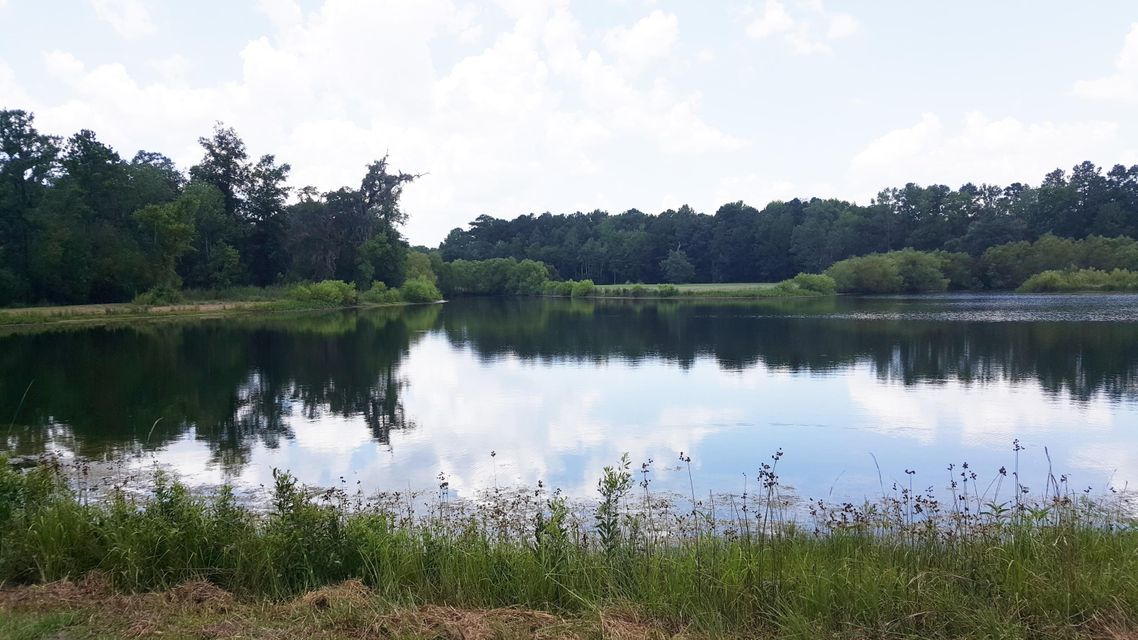 Johns Island Lots For Sale - 4169 Chisolm, Johns Island, SC - 12