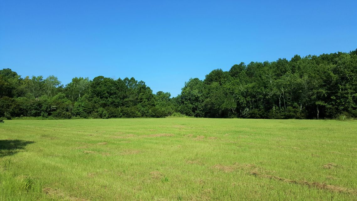 Johns Island Lots For Sale - 4169 Chisolm, Johns Island, SC - 15