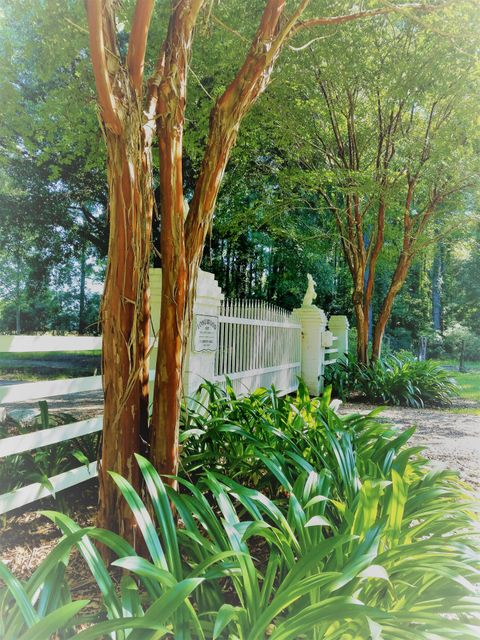 553  Longwood Lane Huger, SC 29450