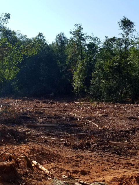 Lot 6 Adams Avenue New Ellenton, SC 29809