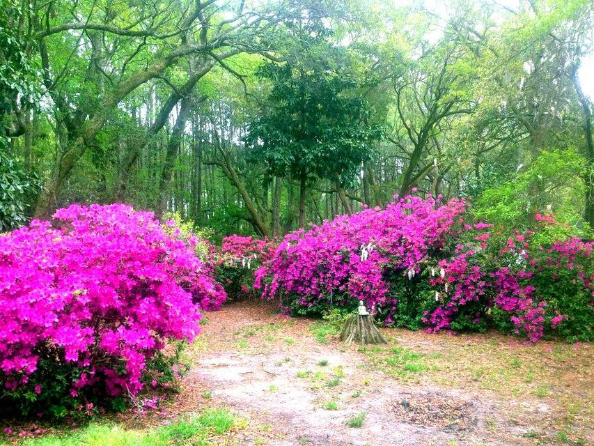 426 Woodland Shores Road Charleston, SC 29412