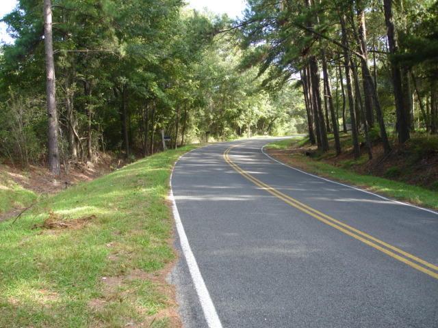 5018  Mauss Hill Rd. Adams Run, SC 29426