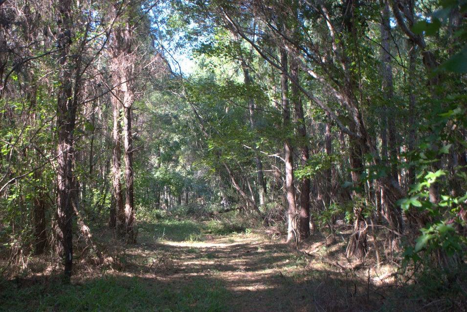 2040  Bentz Road Wadmalaw Island, SC 29487