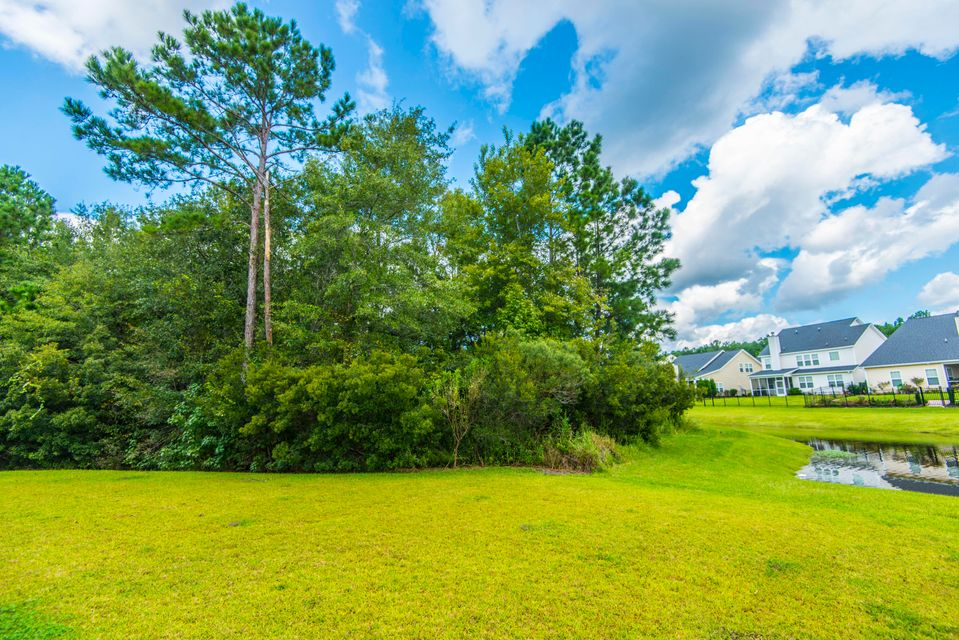 204  Buttonbush Court Moncks Corner, SC 29461