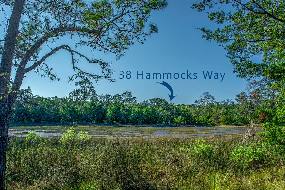 38  Hammocks Way Edisto Island, SC 29438