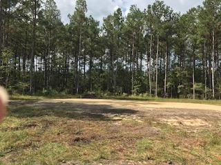 Lot#3  Cummings Chapel Road Ridgeville, SC 29472