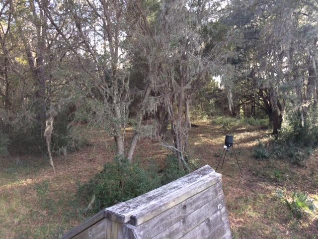 3956  Bulow Plantation Road Johns Island, SC 29455