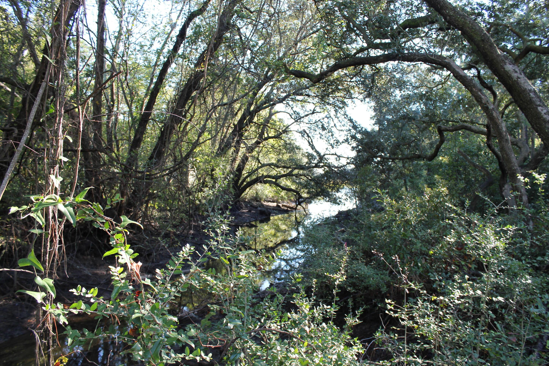 820  Riverton Way James Island, SC 29412