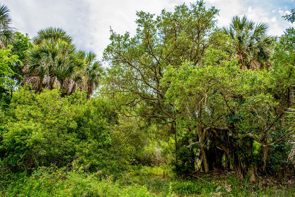 Lot E Cheehaw Street Edisto Beach, SC 29438
