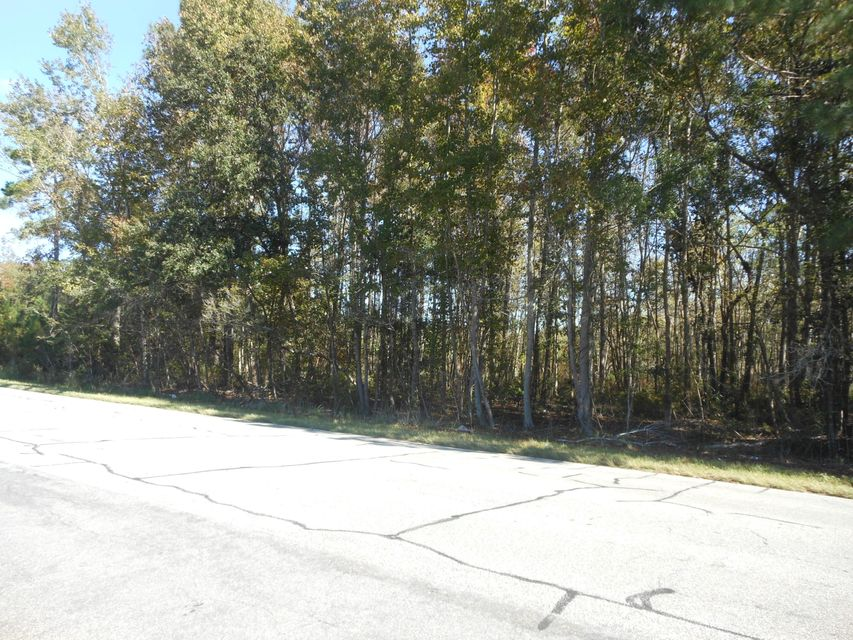 Sc Hwy. 174 Highway Adams Run, SC 29426