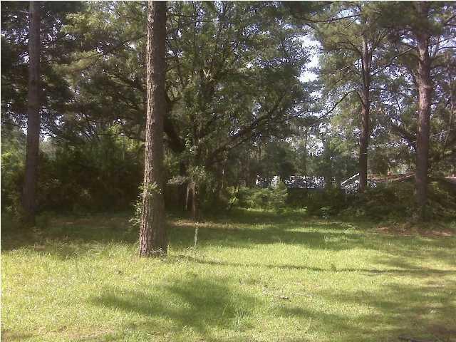 5605  Savannah Highway Ravenel, SC 29470