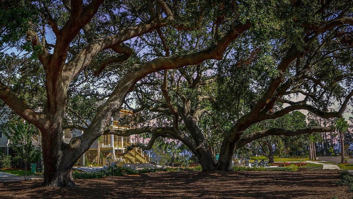 1475 Mossy Branch Way Mount Pleasant, SC 29464