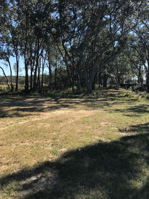 576  Wading Place Daniel Island, SC 29492