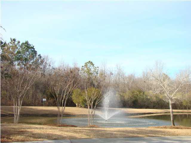 116  Hornby Circle Goose Creek, SC 29445