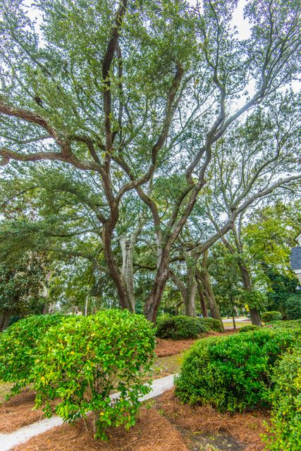 416 Riverland Drive Charleston, SC 29412