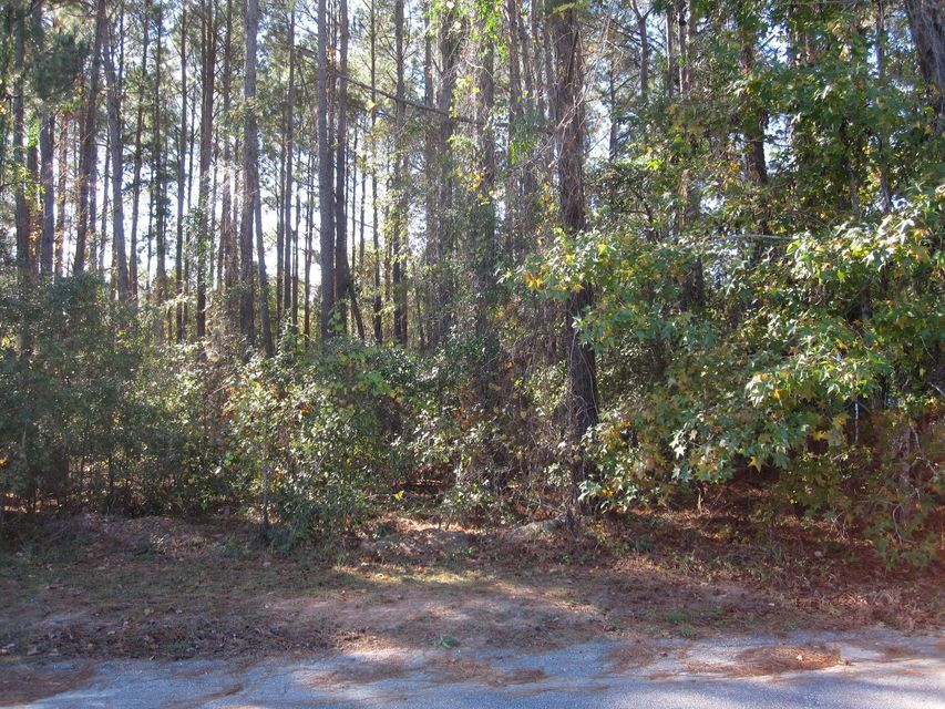 Lot 19 A  Lakeview Drive Manning, SC 29102
