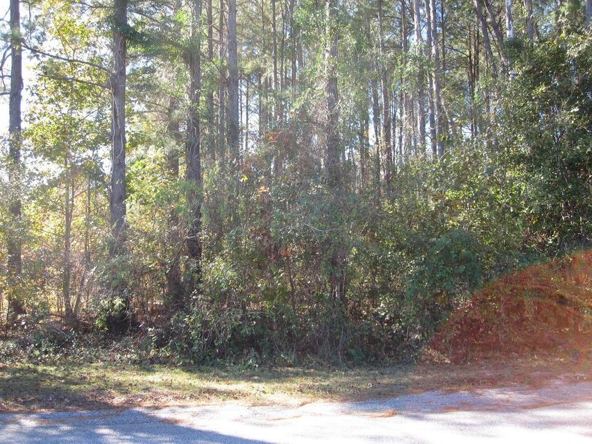 Lot 20 A  Lakeview Drive Manning, SC 29102