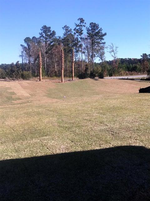 104  Chaste Tree Circle Goose Creek, SC 29445