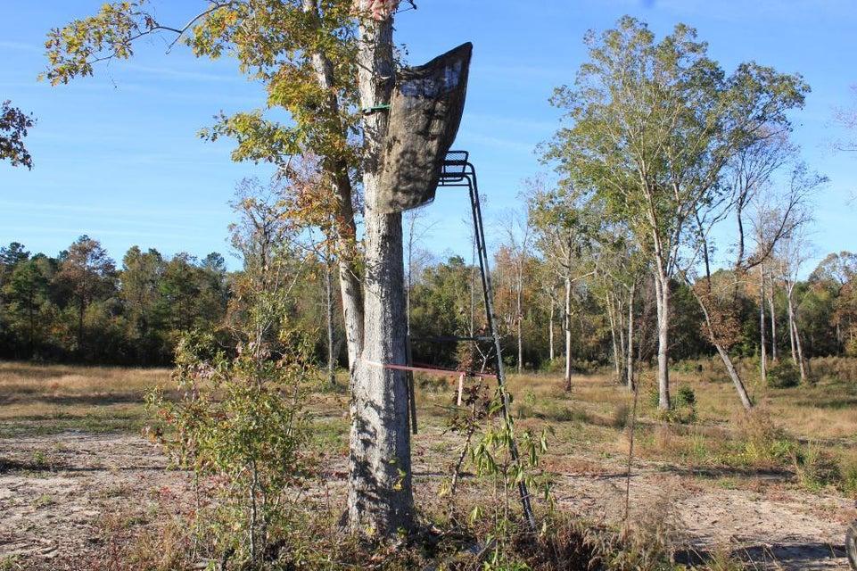 269 Dianes Trail Huger, SC 29450