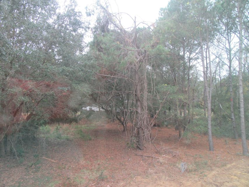 377  Deer Track Drive Edisto Island, SC 29438