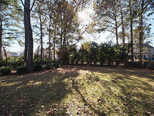 286  Jardinere Walk Mount Pleasant, SC 29464