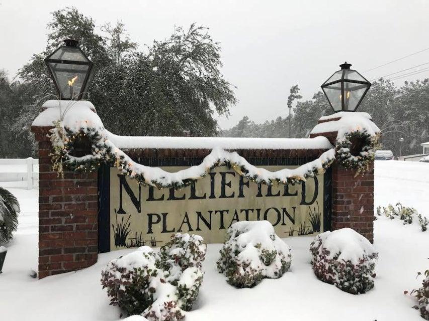 491 Nelliefield Trail Charleston, SC 29492