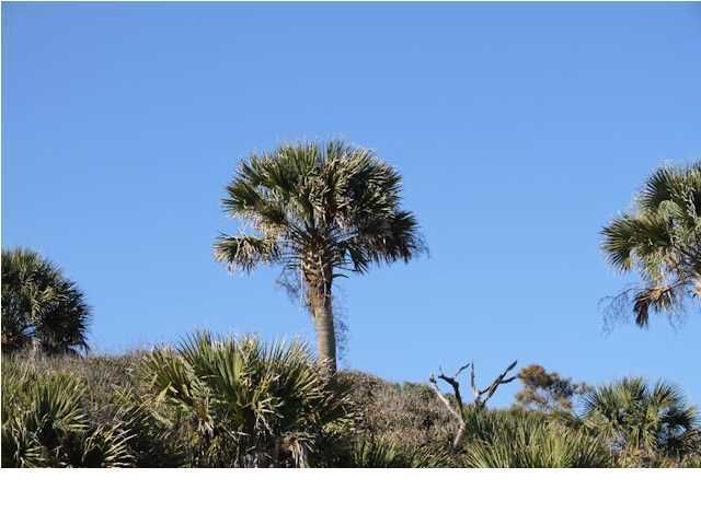 Dewees Island Lots For Sale - 307 Pelican Flight, Dewees Island, SC - 5