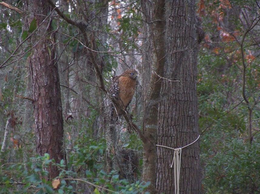 4544 Great Oak Drive North Charleston, SC 29418