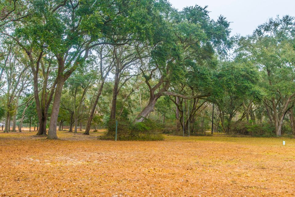 8830  Shell House Road Edisto Island, SC 29438