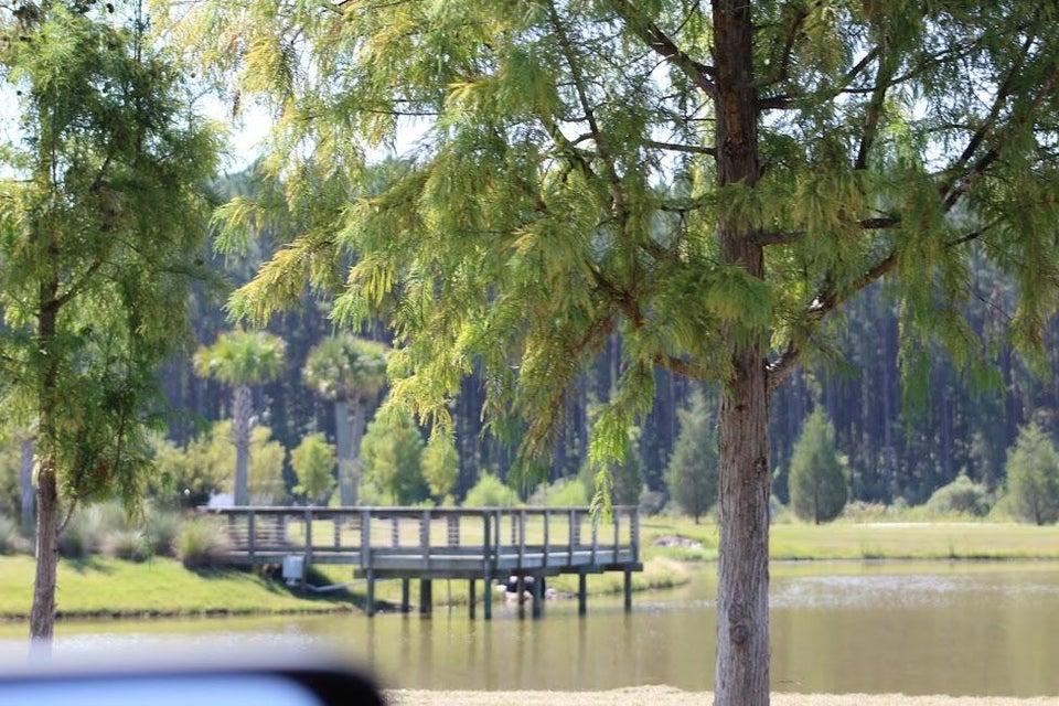 1325  Wood Sorrel Drive Moncks Corner, SC 29461