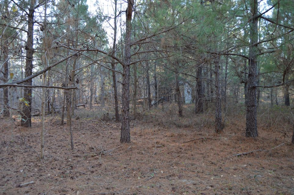845 Target Road Holly Hill, SC 29059