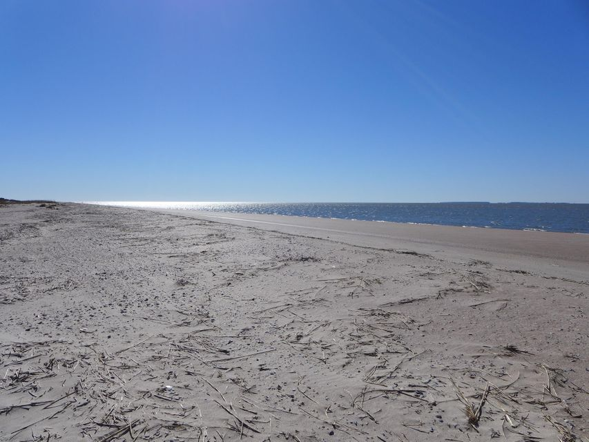 3509  Palmetto Boulevard Edisto Beach, SC 29438
