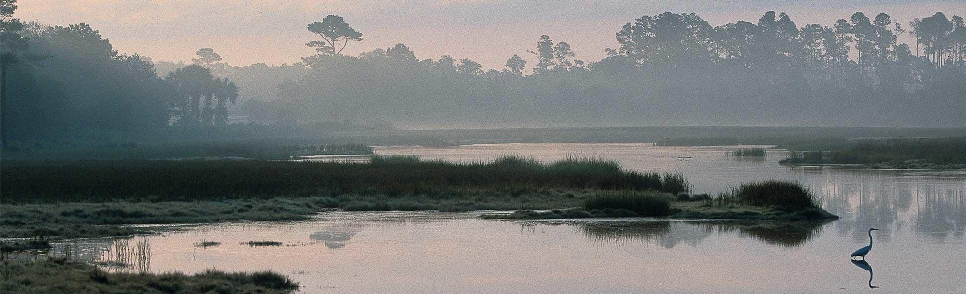 38  Nesting Egret Drive Johns Island, SC 29455