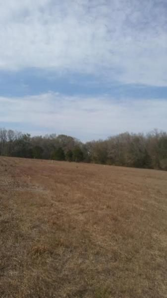 Edward Road Walterboro, SC 29488