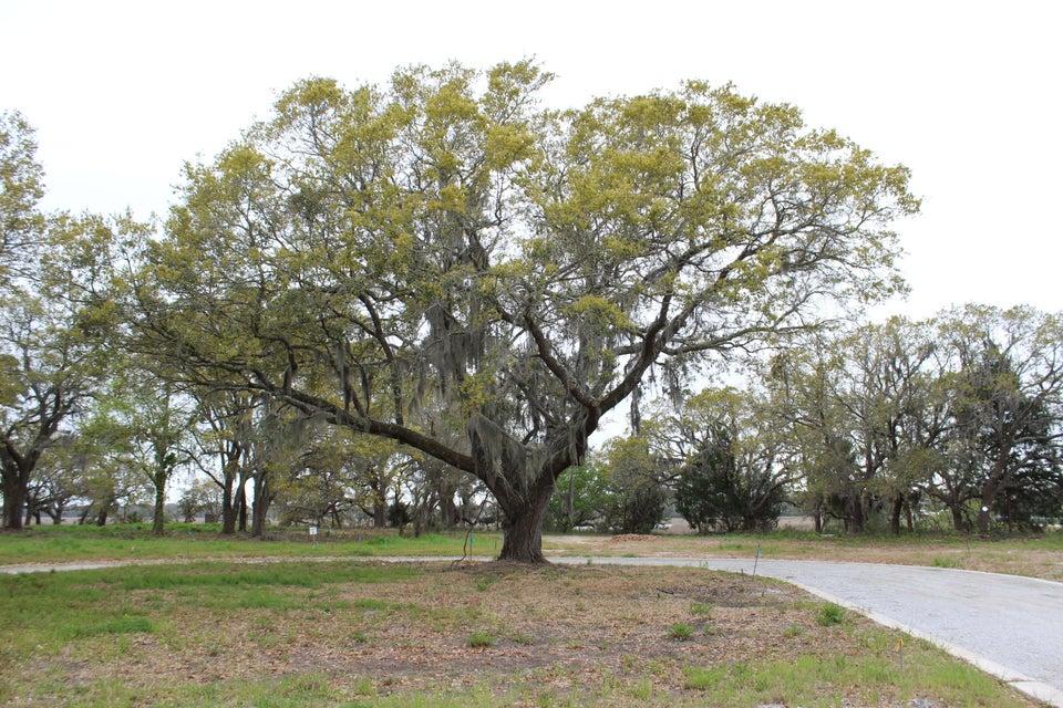 1395  Harbor View Charleston, SC 29412