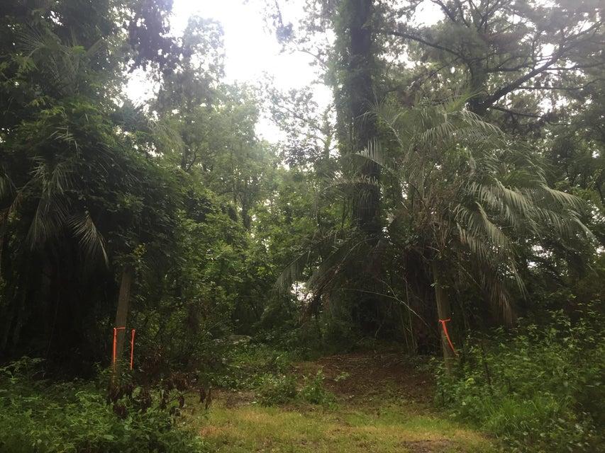 5403  Rosebank Road Wadmalaw Island, SC 29487