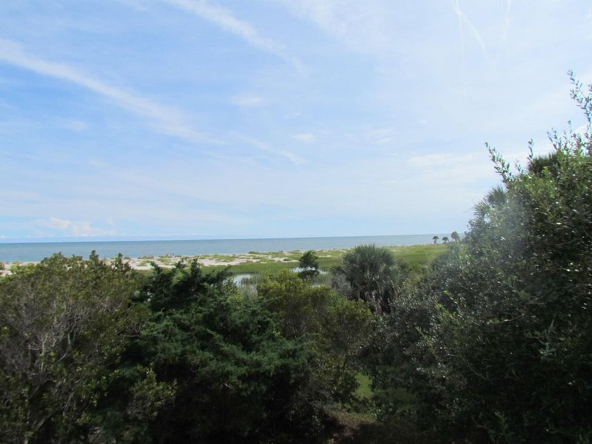 Jeremy Cay Homes For Sale - 10 Toms Turnaround Circle, Edisto Island, SC - 8