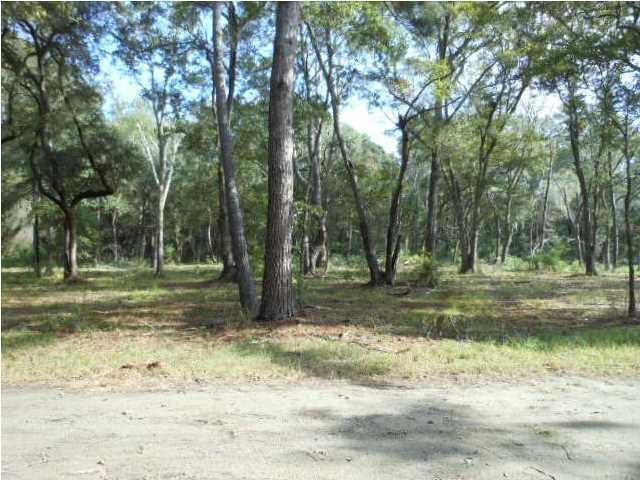 5 Murphy Creek Court Edisto Island, SC 29438