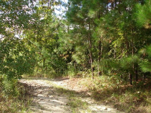 1 Mauss Hill Rd. Adams Run, SC 29426