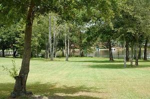 48  Wood Lake Drive Manning, SC 29102