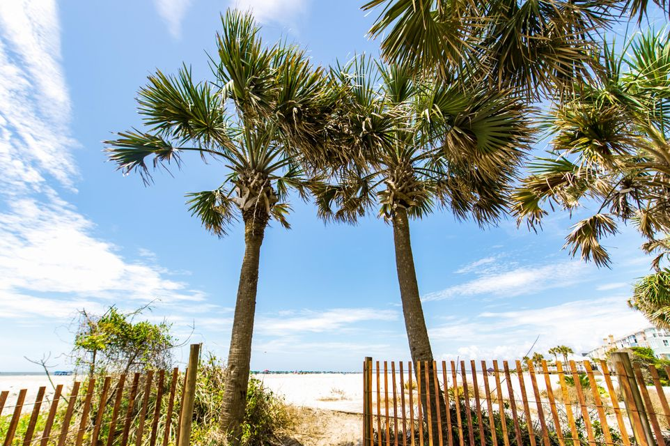 Wild Dunes Homes For Sale - 7 Seagrove, Isle of Palms, SC - 35