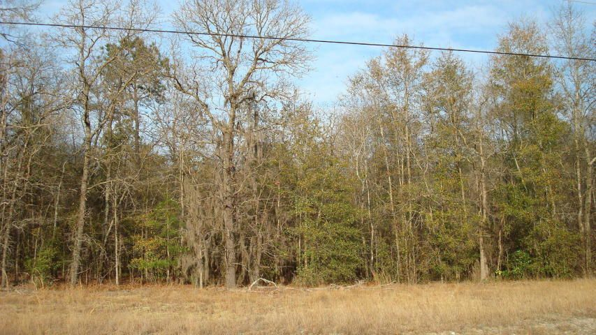 Sigwald Lane Walterboro, SC 29488