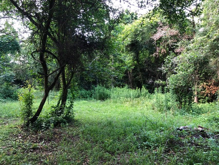 2514 Grace Chapel Road Wadmalaw Island, SC 29487
