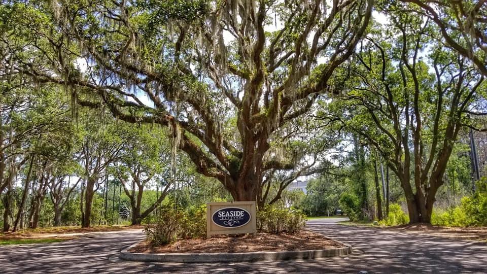 Seaside Plantation Homes For Sale - 1346 Seabass, Charleston, SC - 0