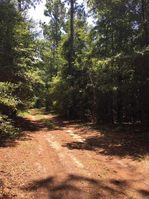 Lot 9 Bloody Point Rd Wadmalaw Island, SC 29487