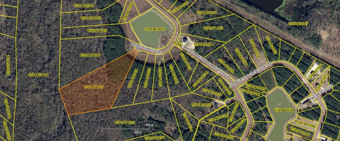 1303 Wood Sorrel Drive Moncks Corner, SC 29461