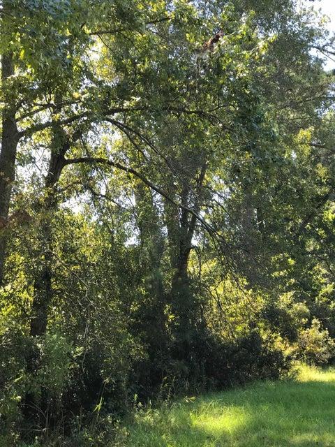 Phillips Farm Trail Ruffin, SC 29475