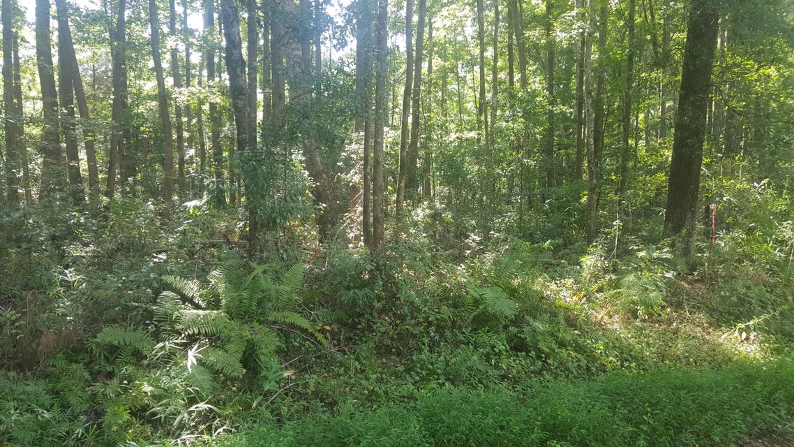 Lot 127 University Drive North Charleston, SC 29418